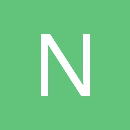 niloofarmajdi